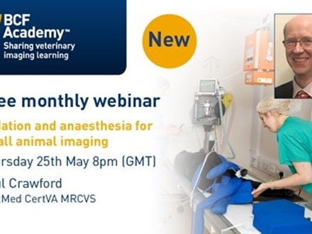 Sedation and anaesthesia small animal webinar