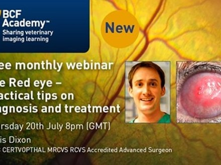 Red eye diagnosis and treatment webinar