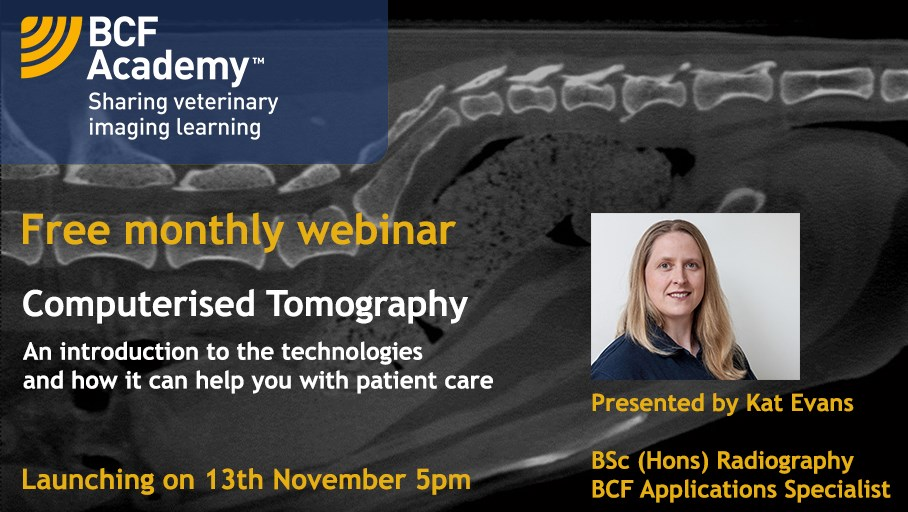 CT Kat Evans webinar 13th november