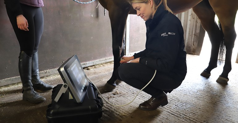 equine.ultrasound.course